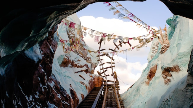 Image result for expedition everest