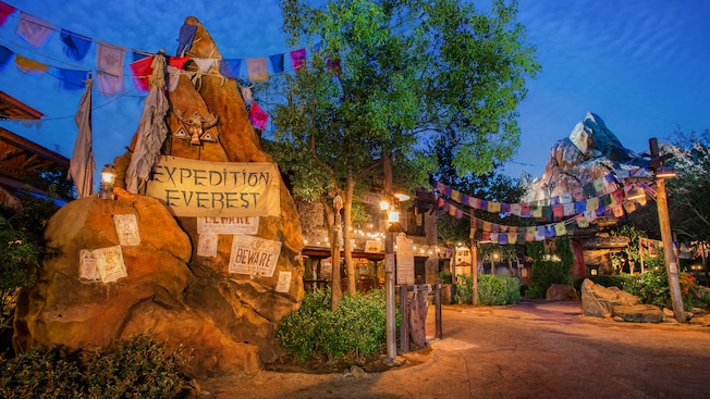 Expedition Everest | Animal Kingdom Attractions | Walt Disney ...