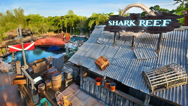 shark reef gallery00