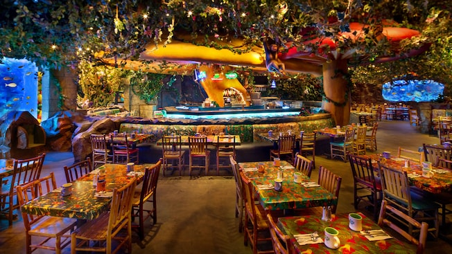 Rainforest Cafe Epcot Menu