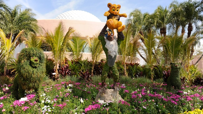 A topiary of Rafiki holding Simba from Disney's The Lion King, as Mufasa and Sarabi look on