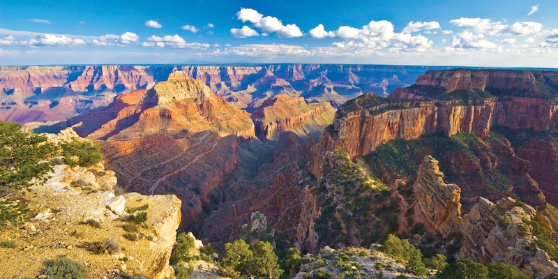 A panoramic view of the Grand Canyon