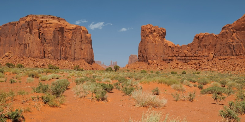 Buttes and mesas rise from a desert floor