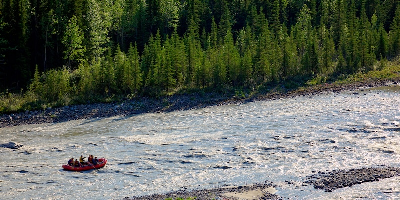 A family enjoys whitewater rafting on a river