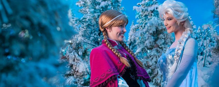 Anna e Elsa de mãos dadas entre as árvores congeladas de Arendelle