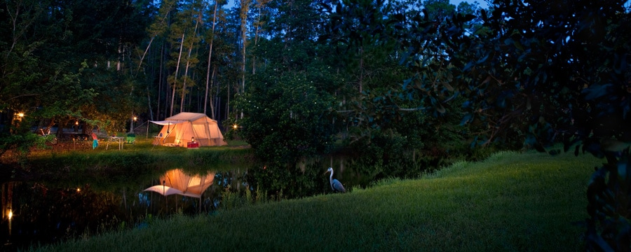 Terrain de camping au Disney's Fort Wilderness Resort, éclairé la nuit