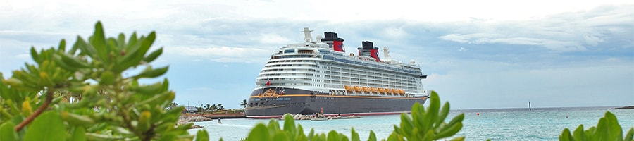 Plant foliage with a Disney Cruise Line ship and ocean in the distance